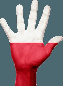 Polska giełda kryptowalut nie musi oznaczać gorszej jakości lub mniejszej liczby kryptowalut. Marki takie jak Bitmarket czy Bitbay dostarczają dobrą usługę i wsparcie po polsku. Wybierz polskie giełdy kryptowalut.