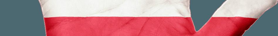 Polskie giełdy kryptowalut oznaczają wsparcie po polsku i dobrą jakość usług. Sprawdź Bitmarket lub Bitbay i kupuj Bitcoin i inne kryptowaluty